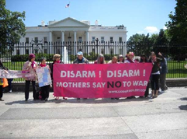 May 2010 Protest at White House Pic #7